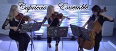 Capriccio Ensemble - ceremony music